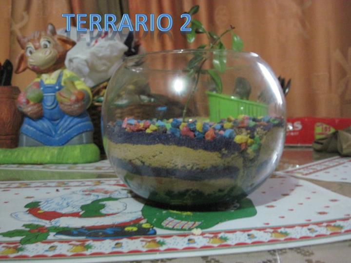 TERRARIO 2