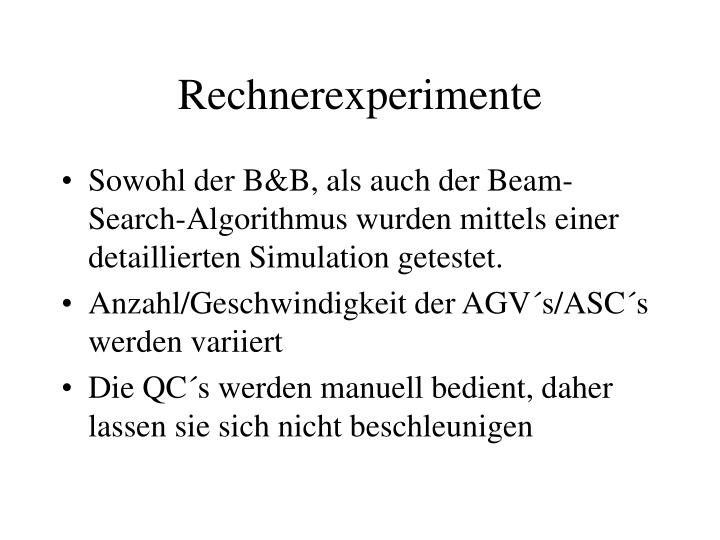 Rechnerexperimente