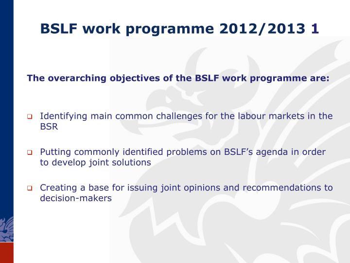 BSLF work programme 2012/2013