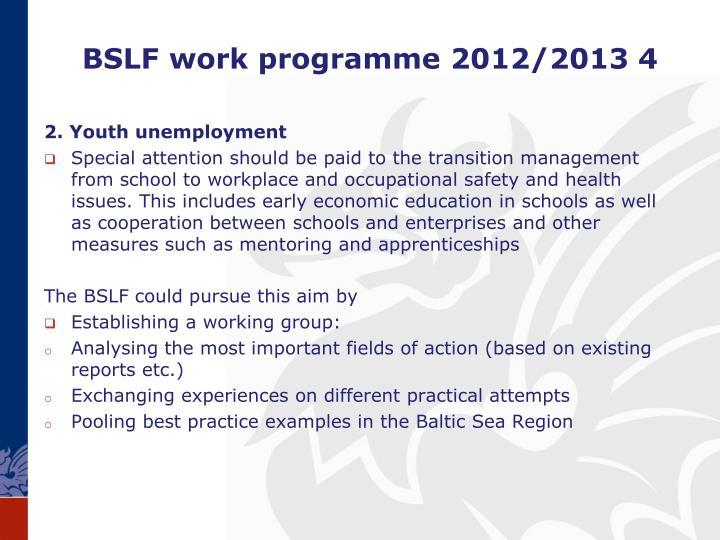 BSLF work programme