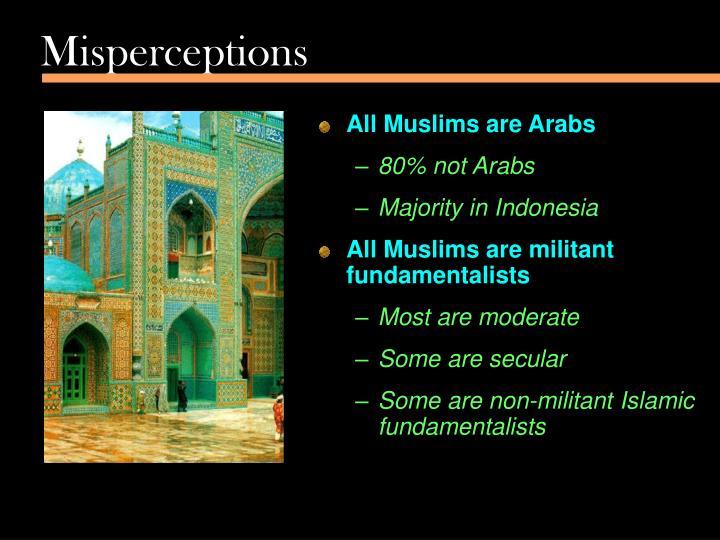 Misperceptions