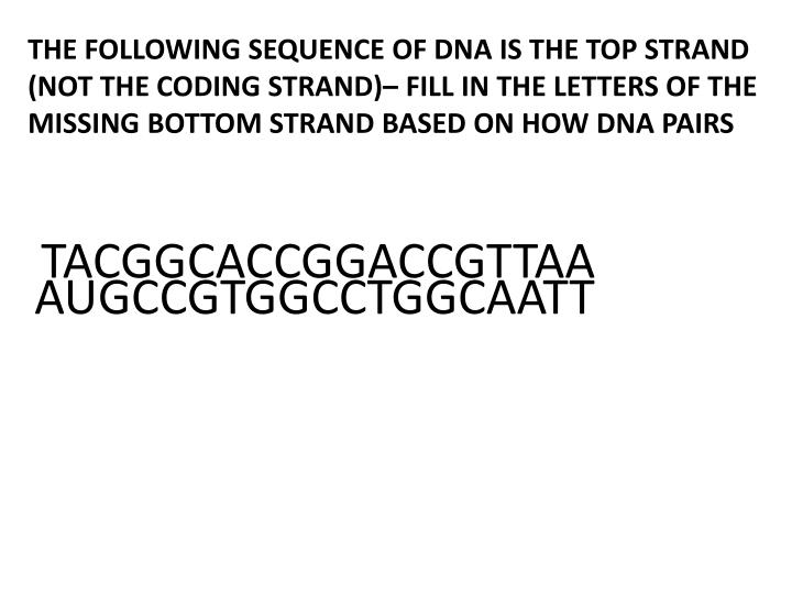 THE FOLLOWING SEQUENCE OF DNA IS THE TOP STRAND (NOT THE CODING STRAND)– FILL IN THE LETTERS OF THE MISSING BOTTOM STRAND BASED ON HOW DNA PAIRS