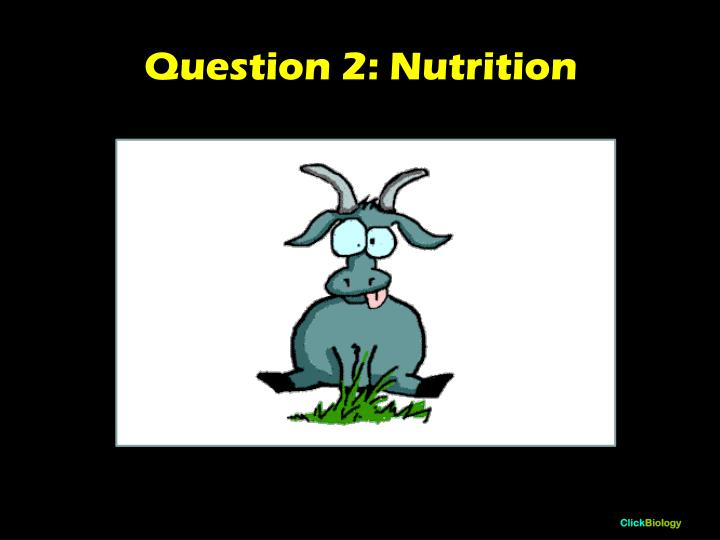 Question 2: Nutrition