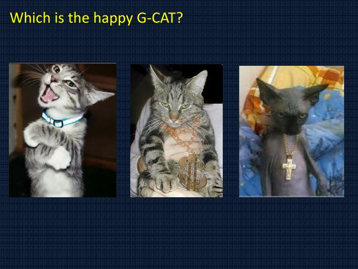 Which is the happy G-CAT?
