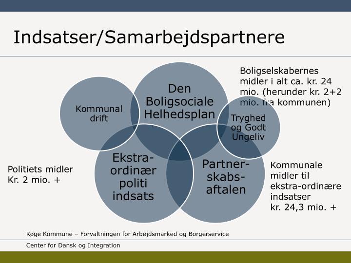 Indsatser/Samarbejdspartnere