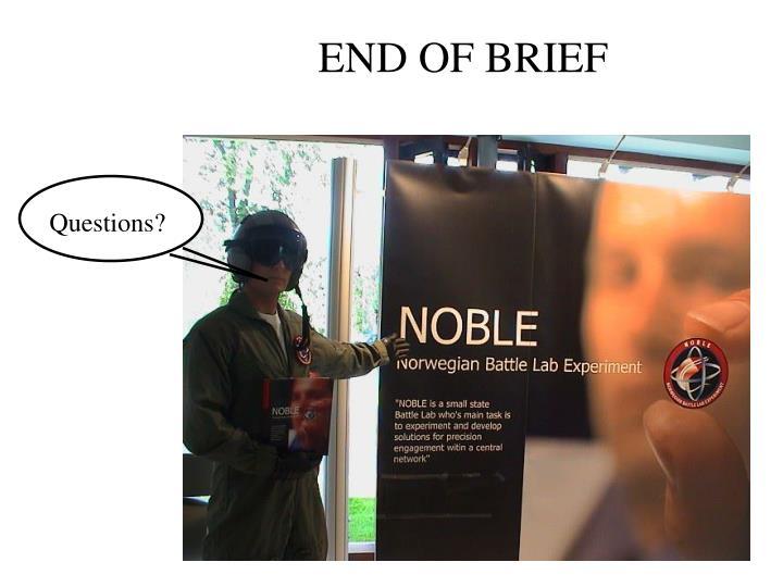 END OF BRIEF