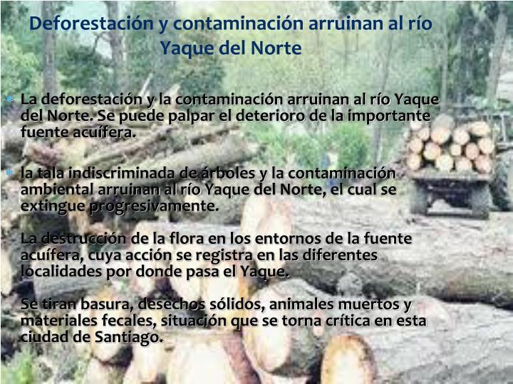 Deforestación y contaminación arruinan al río