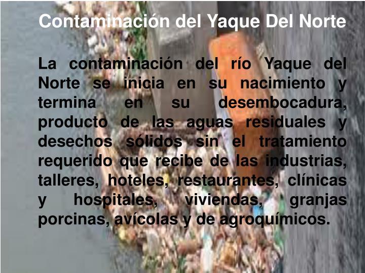 Contaminación del Yaque Del Norte