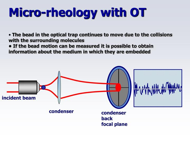 Micro-rheology with OT