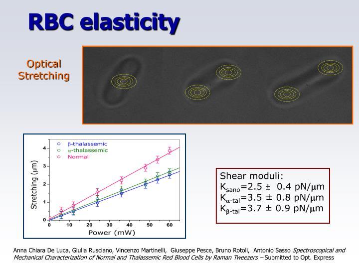 RBC elasticity