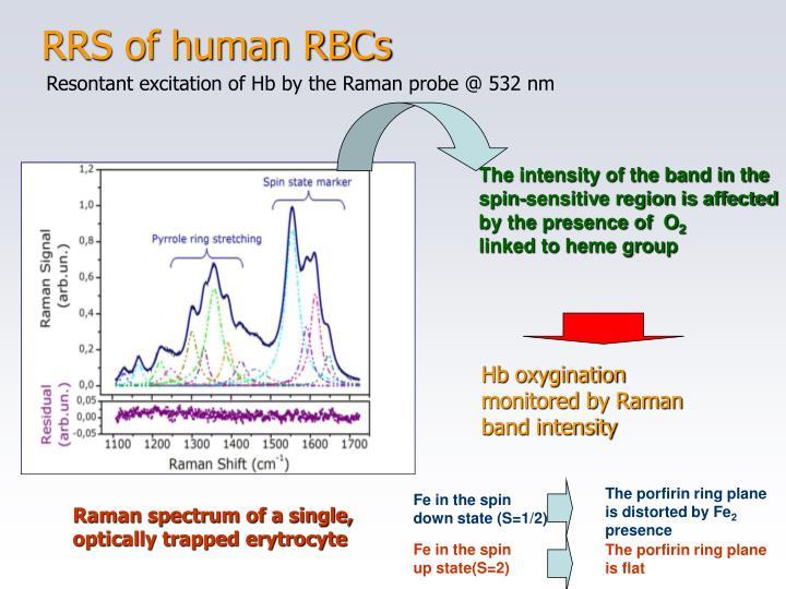 RRS of human RBCs