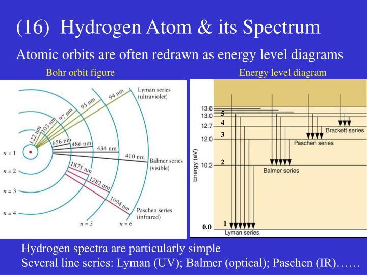 (16)  Hydrogen Atom & its Spectrum