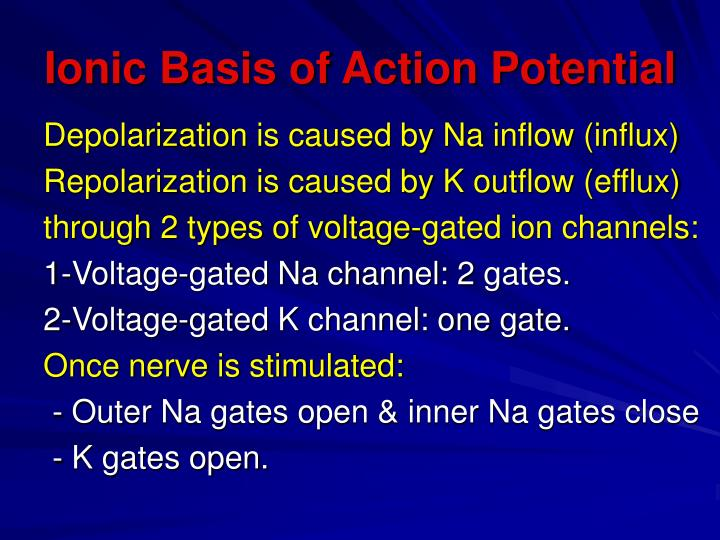 Ionic Basis of Action Potential