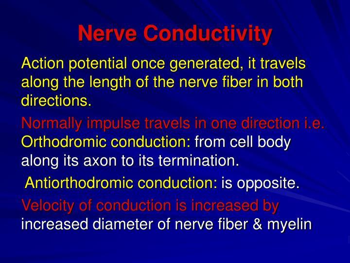 Nerve Conductivity