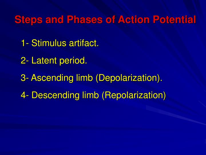 Steps and Phases of Action Potential