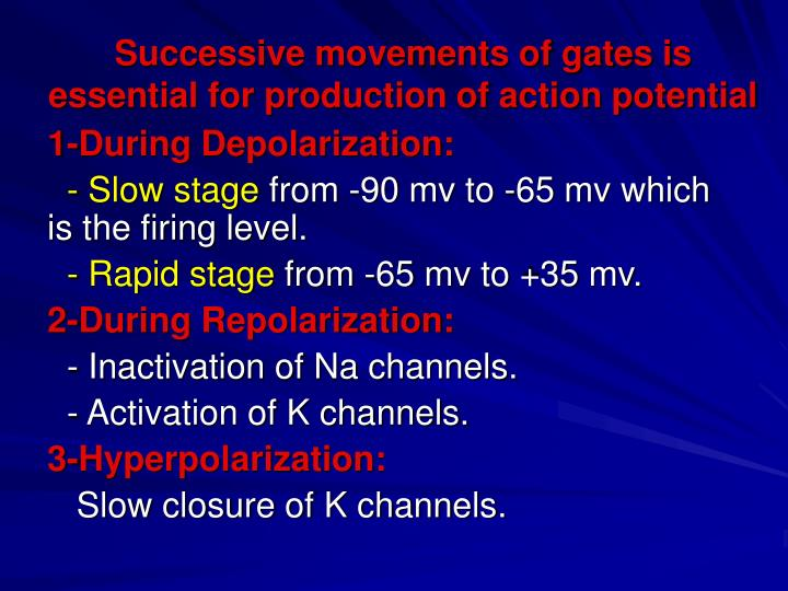 Successive movements of gates is essential for production of action potential