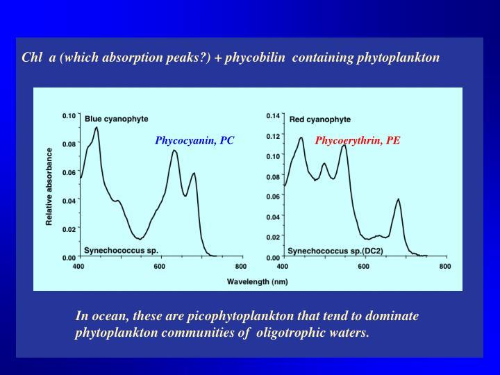 Phycocyanin, PC
