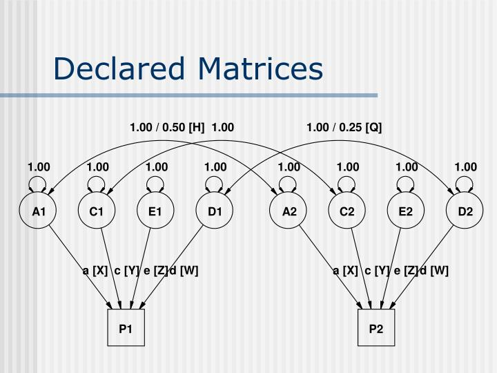 Declared Matrices