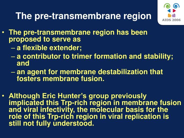 The pre-transmembrane region