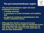 the pre transmembrane region
