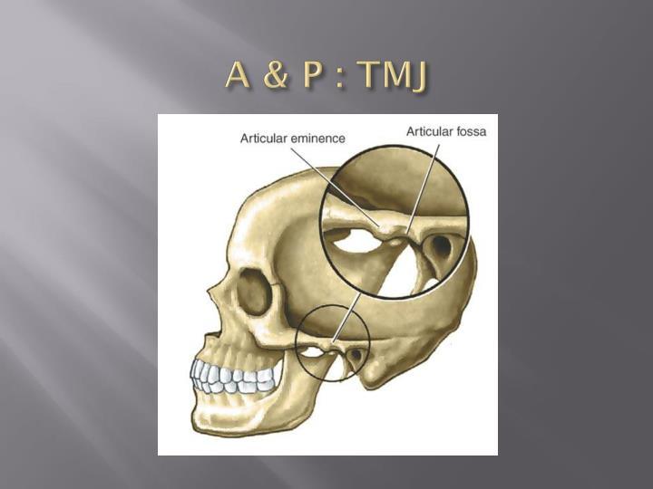 A & P : TMJ