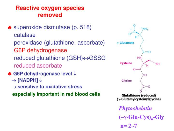 Reactive oxygen species removed