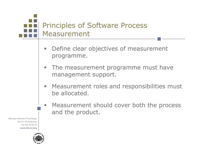 Principles of Software Process Measurement
