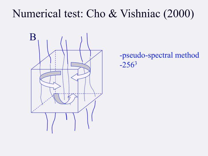 Numerical test: Cho & Vishniac (2000)