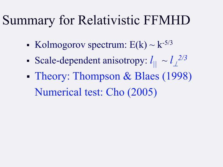 Summary for Relativistic FFMHD