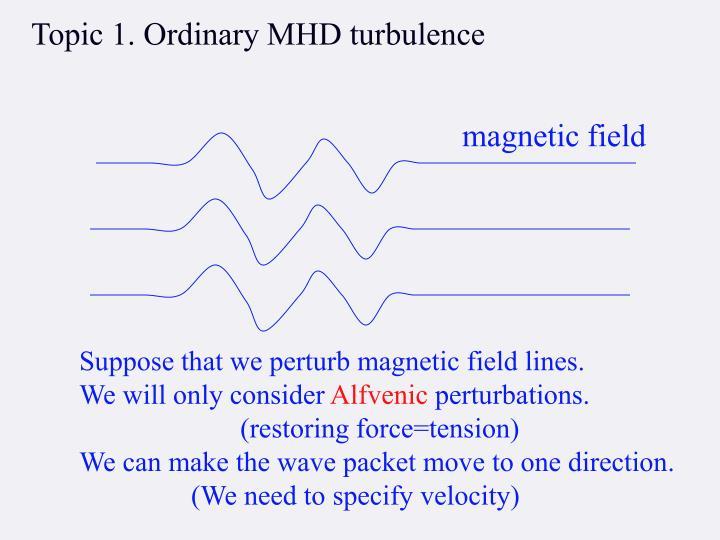 Topic 1. Ordinary MHD turbulence