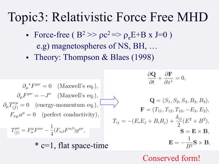 Topic3: Relativistic Force Free MHD