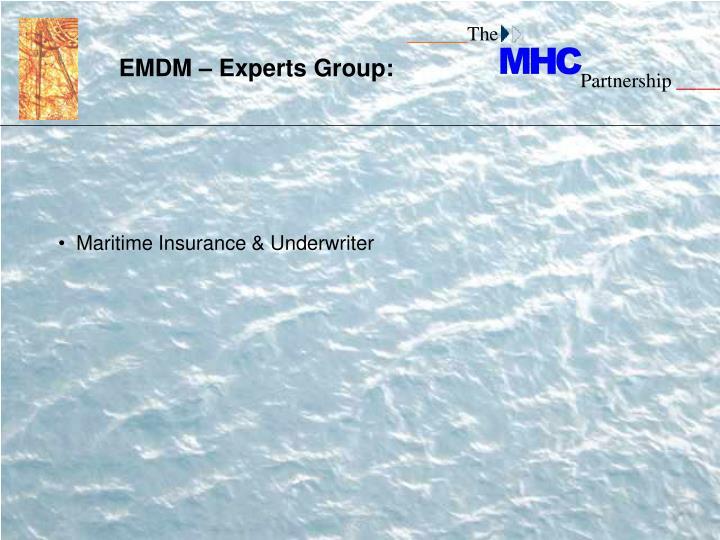 EMDM – Experts Group: