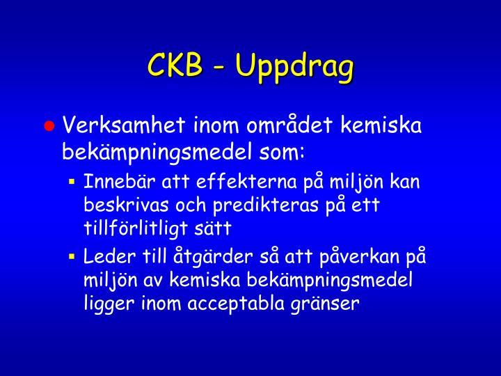 CKB - Uppdrag
