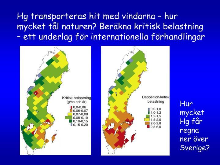 Hg transporteras hit med vindarna – hur mycket tål naturen? Beräkna kritisk belastning – ett underlag för internationella förhandlingar