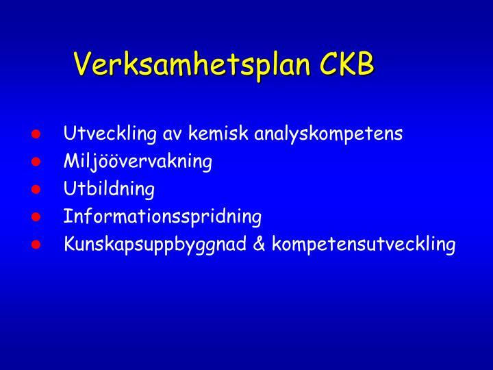 Verksamhetsplan CKB