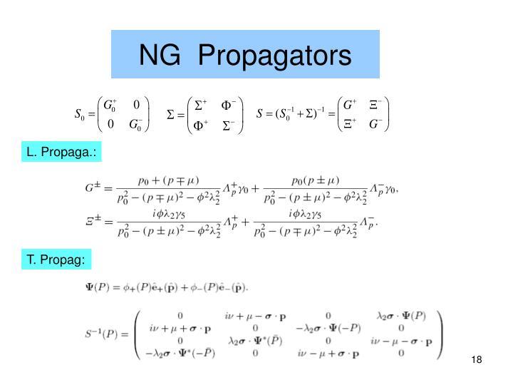 NG  Propagators