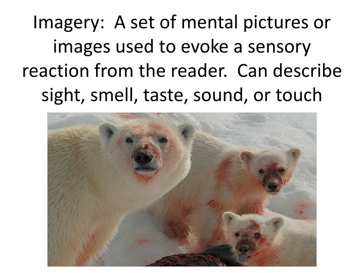 Imagery:  A set of mental pictures or images used to evoke a sensory reaction from the reader.  Can describe sight, smell, taste, sound, or touch
