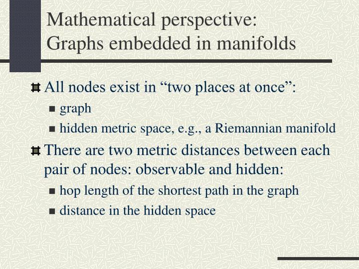 Mathematical perspective:
