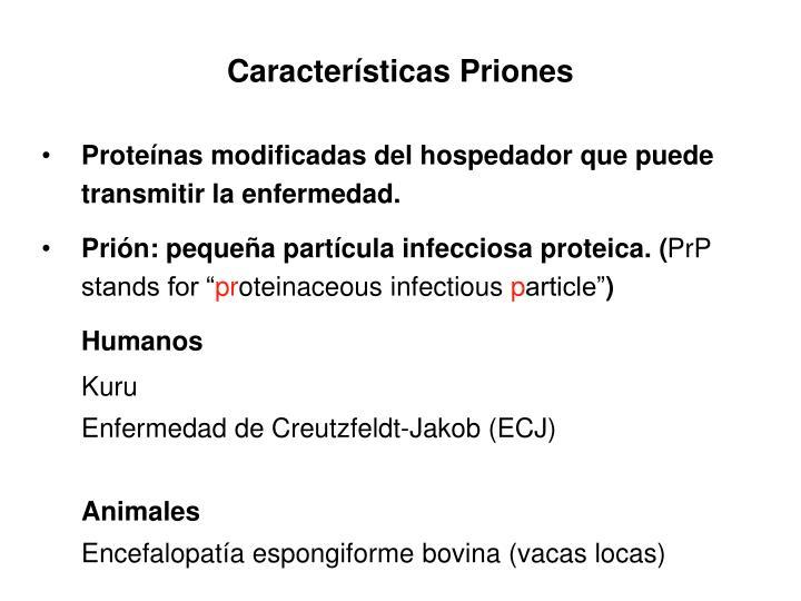 Características Priones