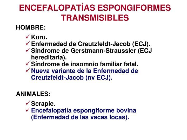ENCEFALOPATÍAS ESPONGIFORMES TRANSMISIBLES