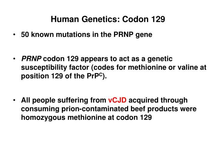 Human Genetics: Codon 129