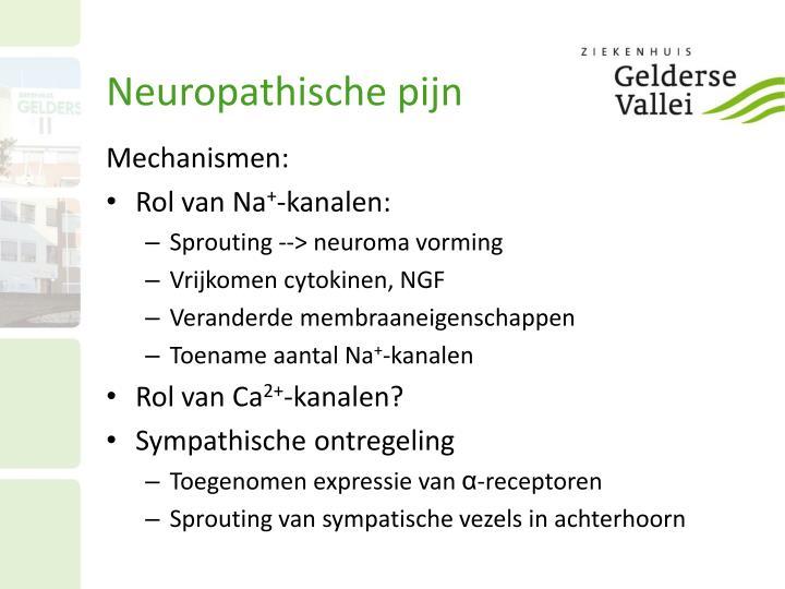 Neuropathische pijn