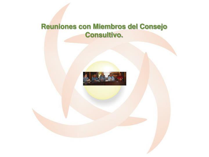 Reuniones con Miembros del Consejo Consultivo.