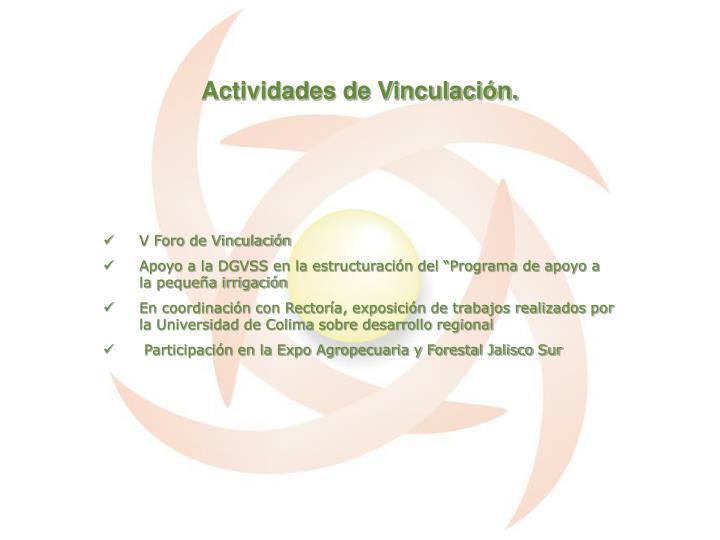 Actividades de Vinculación.