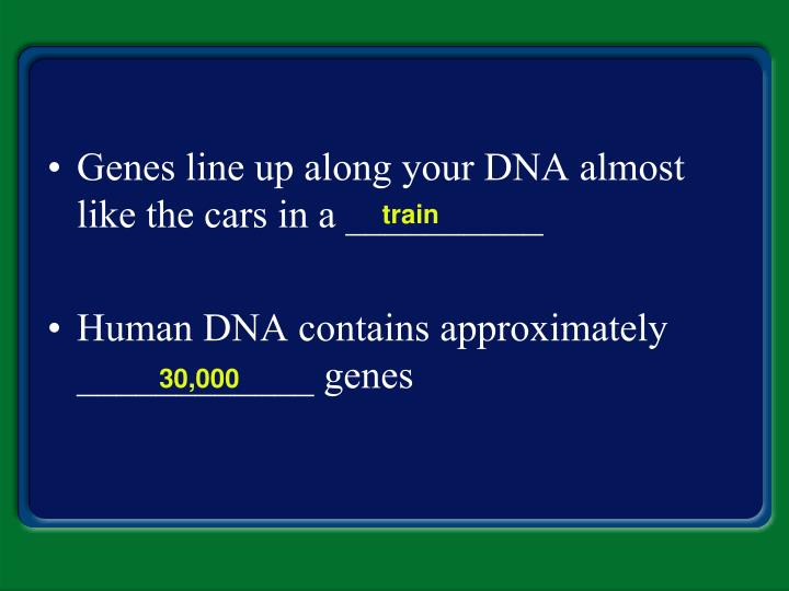 Genes line up along your DNA almost like the cars in a __________