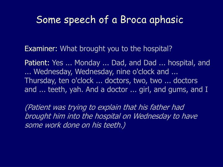 Some speech of a Broca aphasic