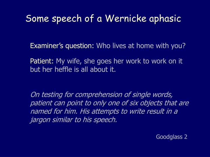 Some speech of a Wernicke aphasic