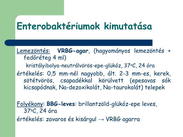 Enterobaktériumok