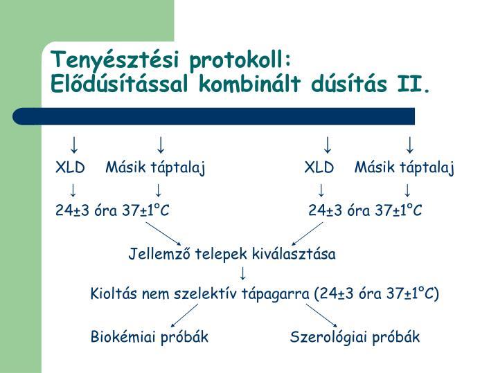 Tenyésztési protokoll: