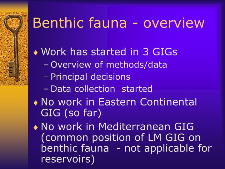 Benthic fauna - overview